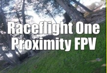 RaceFlight-One-RF1-Low-and-Tight-Through-The-Trees