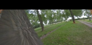 Tree-ining-session
