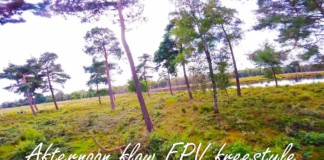 Afternoon-Flow-FPV-freestyle