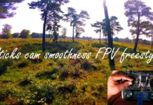 Sticks-cam-Smoothness-FPV-freestyle