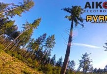 Tree-dancing-2.0-FPV-freestyle