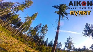 Tree-dancing-2.0-FPV-freestyle