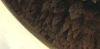 Forest-Trail-Sassy-FPV