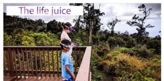 The-life-juice-Coffee-plantation-Hawaii