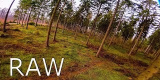 RAW-FPV-freestyle-Pine-FOREST-NO-CUTS